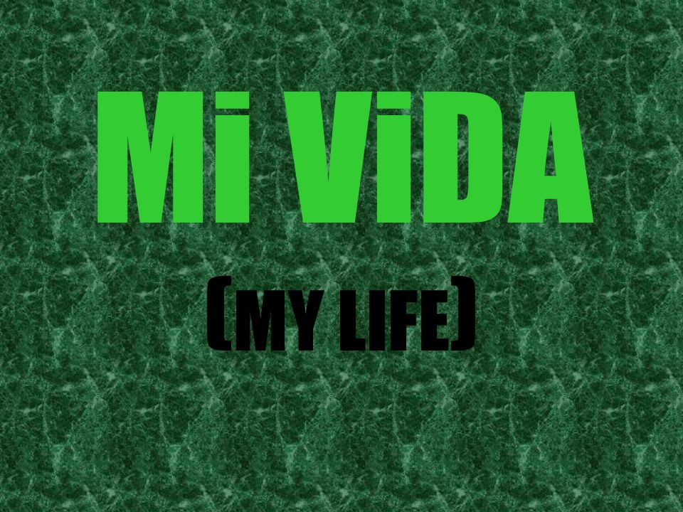Mi ViDA ( MY LIFE )