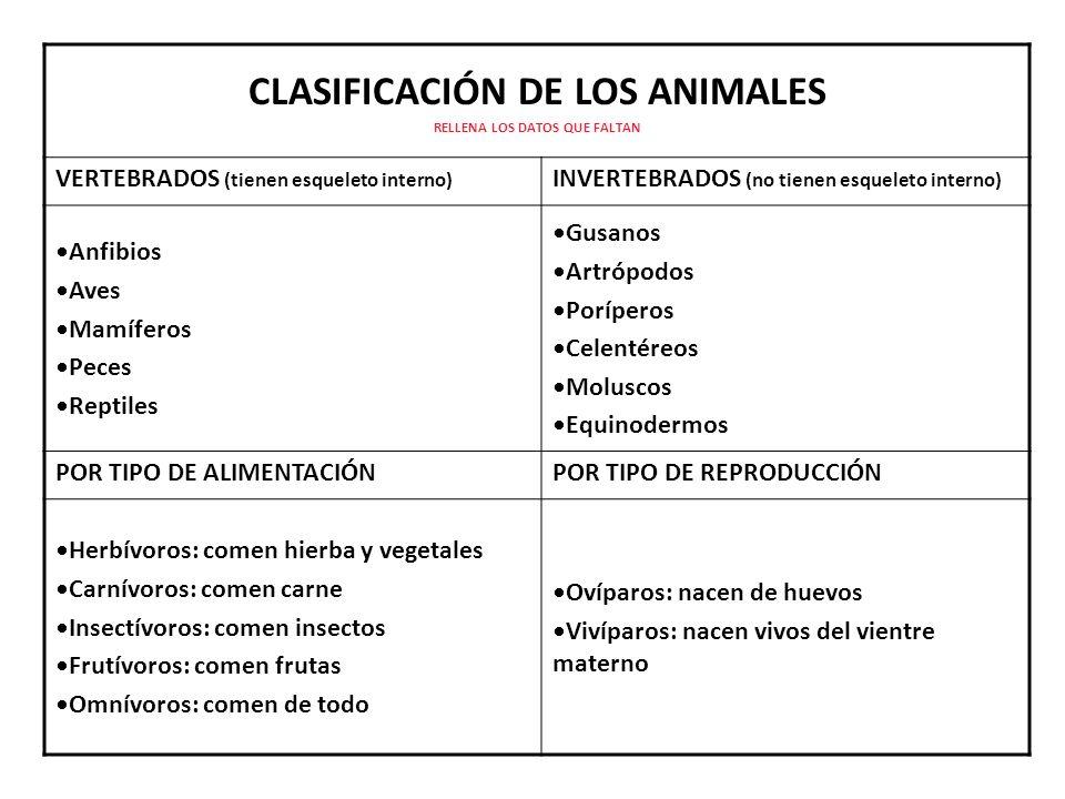 CLASIFICACIÓN DE LOS ANIMALES RELLENA LOS DATOS QUE FALTAN VERTEBRADOS (tienen esqueleto interno) INVERTEBRADOS (no tienen esqueleto interno) Anfibios