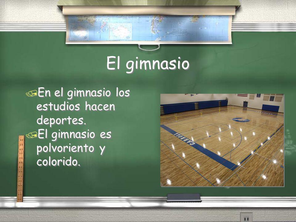 El gimnasio / En el gimnasio los estudios hacen deportes. / El gimnasio es polvoriento y colorido. / En el gimnasio los estudios hacen deportes. / El