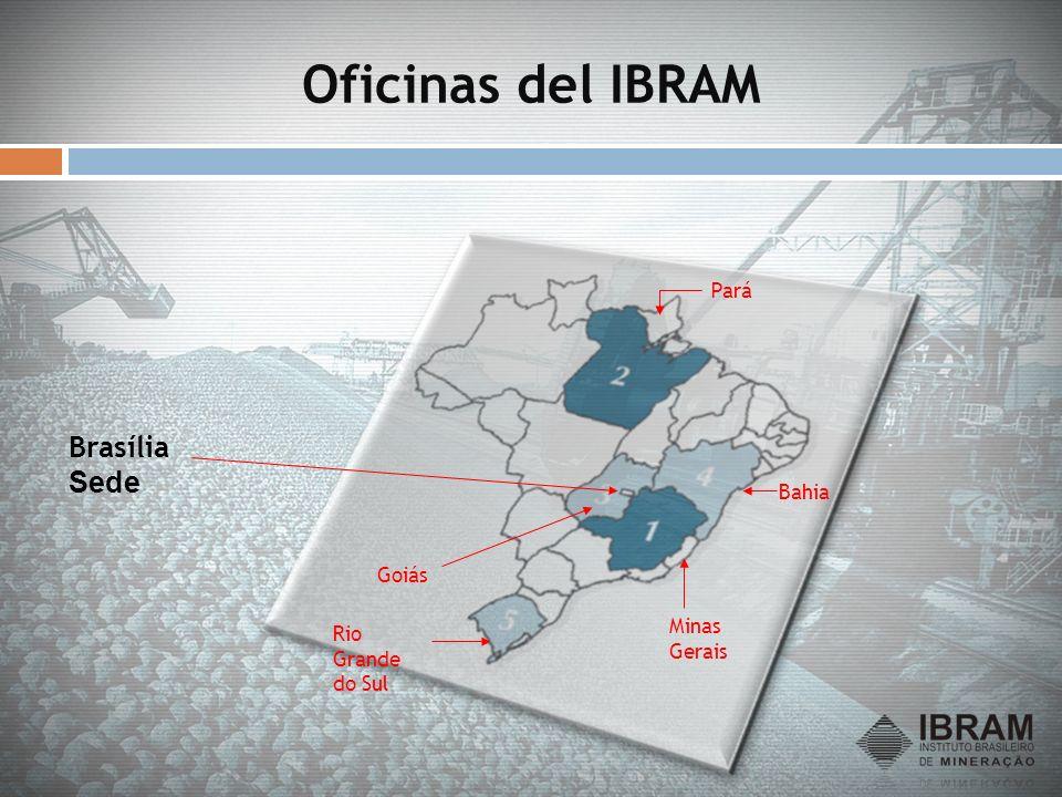 Evolución de la Producción Mineral Brasileña Valores en US$ Miles de Millones No incluídos Petróleo y Gas 0 5 10 15 20 25 30 78808284868890929496980002040608 Variación 2000/2008 250% Variación 2000/2008 250% 2008 = US$ 28 Mil millones