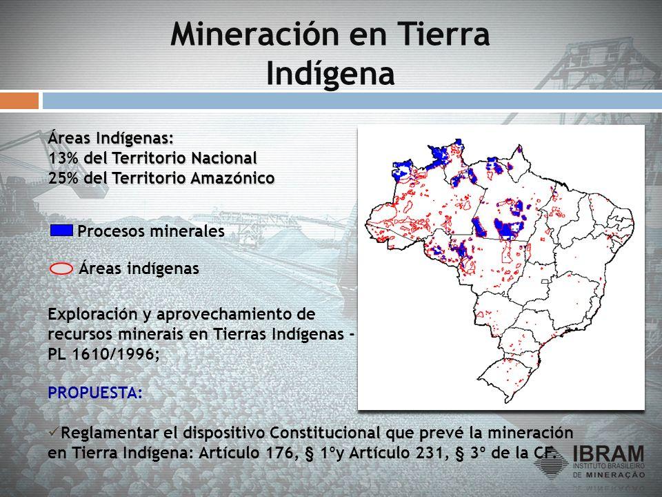 Mineración en Tierra Indígena PROPUESTA: Reglamentar el dispositivo Constitucional que prevé la mineración en Tierra Indígena: Artículo 176, § 1ºy Art