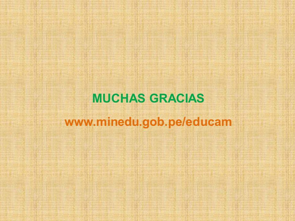 MUCHAS GRACIAS www.minedu.gob.pe/educam