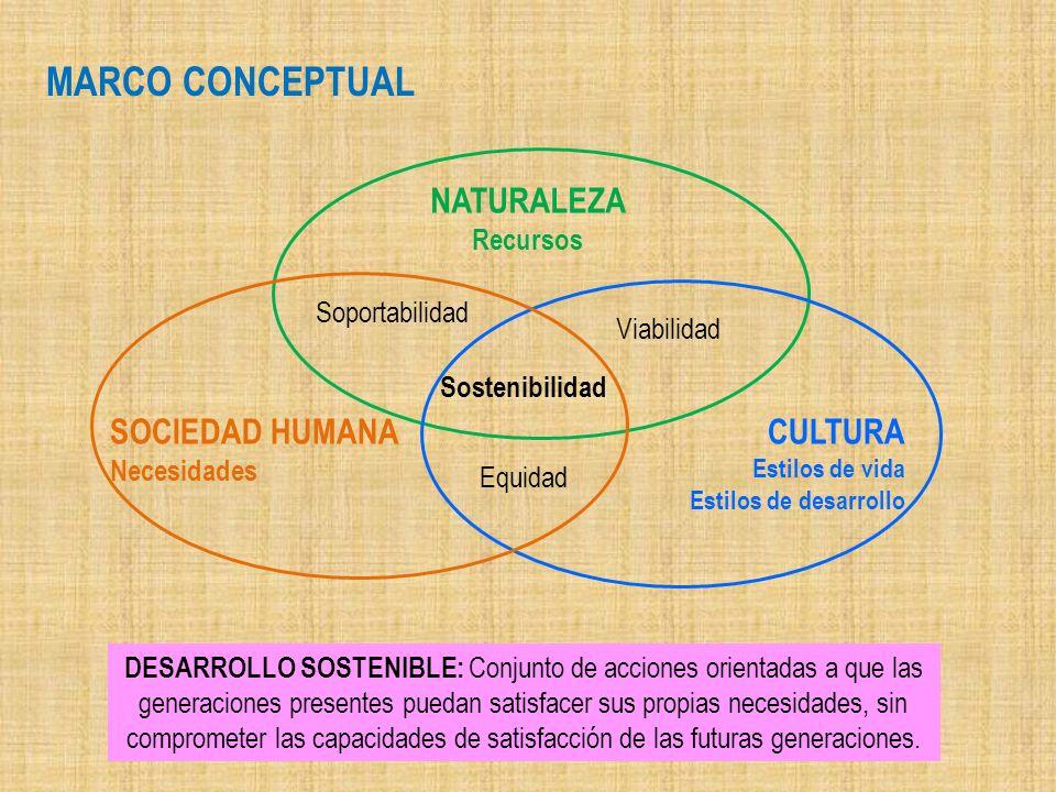 Viabilidad Soportabilidad Sostenibilidad Equidad CULTURA Estilos de vida Estilos de desarrollo NATURALEZA Recursos SOCIEDAD HUMANA Necesidades DESARRO