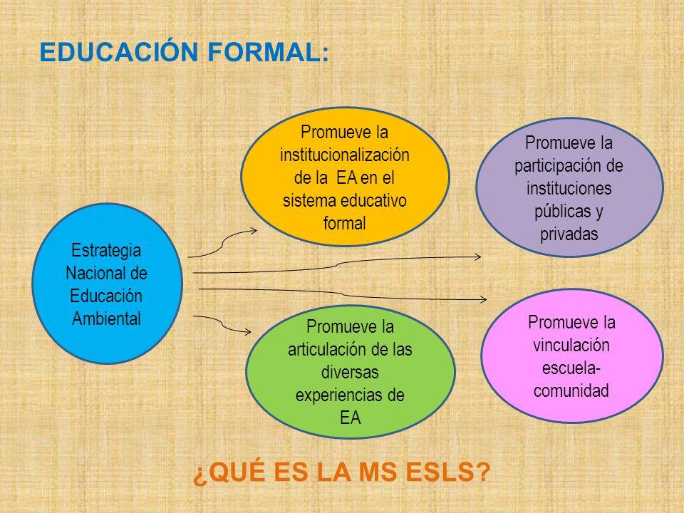 ¿QUÉ ES LA MS ESLS? Estrategia Nacional de Educación Ambiental Promueve la institucionalización de la EA en el sistema educativo formal Promueve la ar