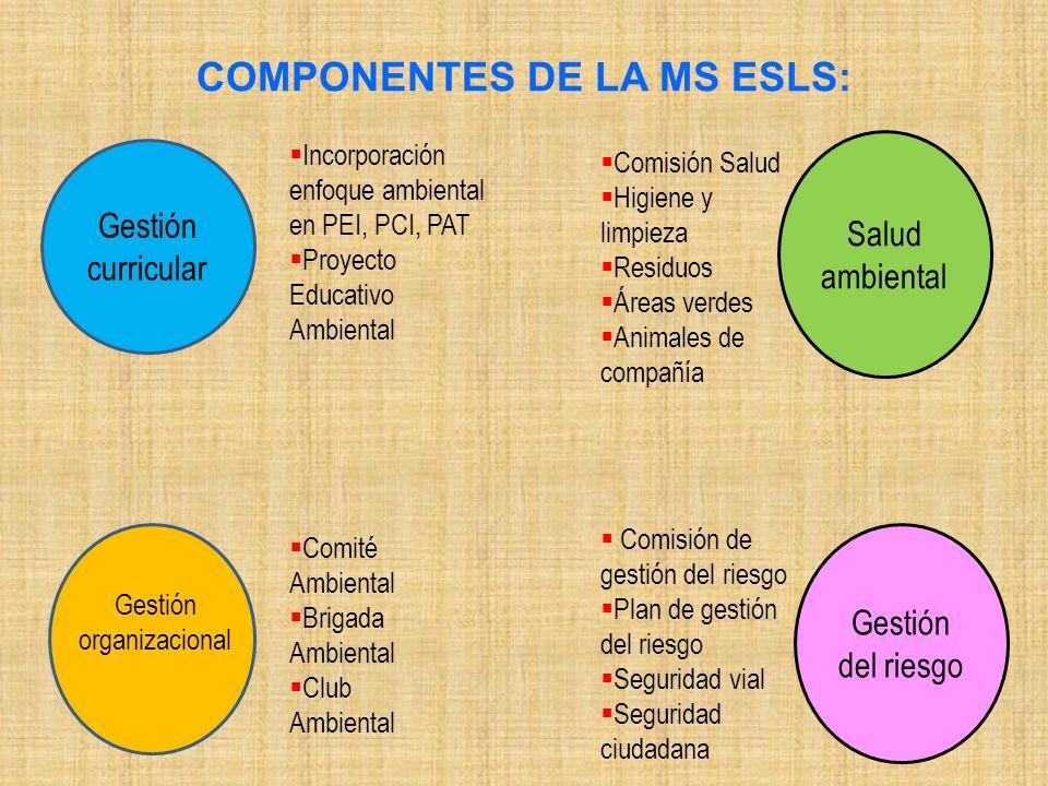 COMPONENTES DE LA MS ESLS: Salud ambiental Gestión del riesgo Gestión curricular Comité Ambiental Brigada Ambiental Club Ambiental Gestión organizacio