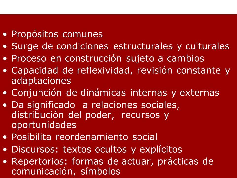 Propósitos comunes Surge de condiciones estructurales y culturales Proceso en construcción sujeto a cambios Capacidad de reflexividad, revisión consta