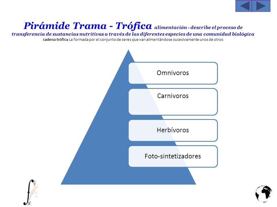 Pirámide Trama - Trófica alimentación - describe el proceso de transferencia de sustancias nutritivas a través de las diferentes especies de una comun