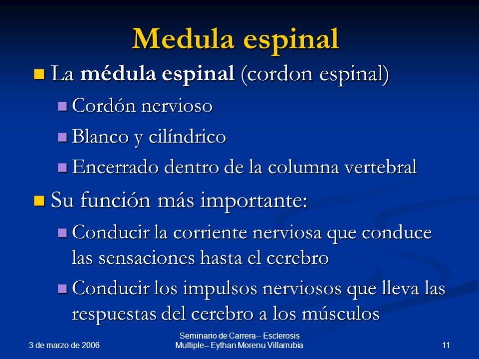 3 de marzo de 2006 11 Seminario de Carrera-- Esclerosis Multiple-- Eythan Morenu Villarrubia Medula espinal La médula espinal (cordon espinal) La médu