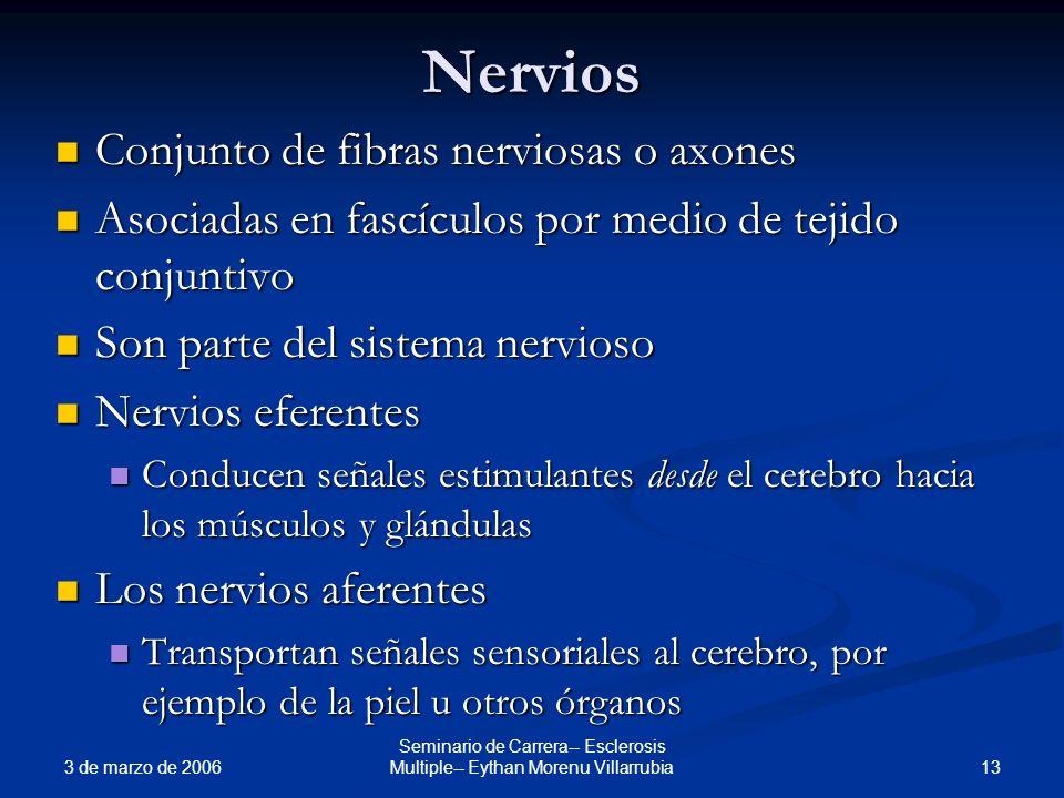 3 de marzo de 2006 13 Seminario de Carrera-- Esclerosis Multiple-- Eythan Morenu Villarrubia Nervios Conjunto de fibras nerviosas o axones Conjunto de