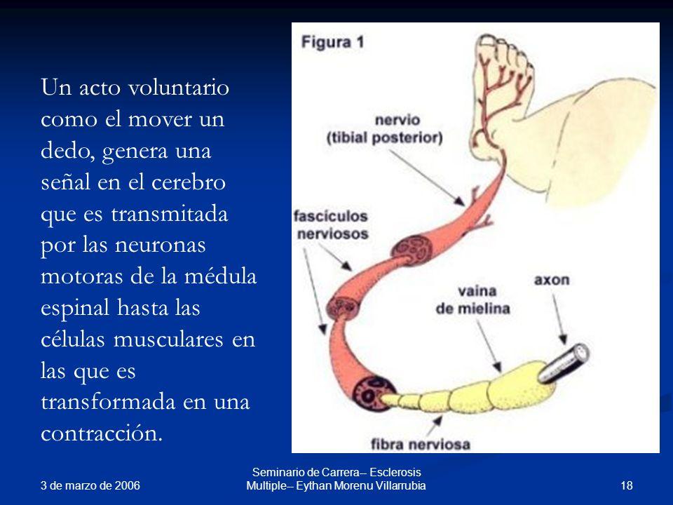 3 de marzo de 2006 18 Seminario de Carrera-- Esclerosis Multiple-- Eythan Morenu Villarrubia Un acto voluntario como el mover un dedo, genera una seña