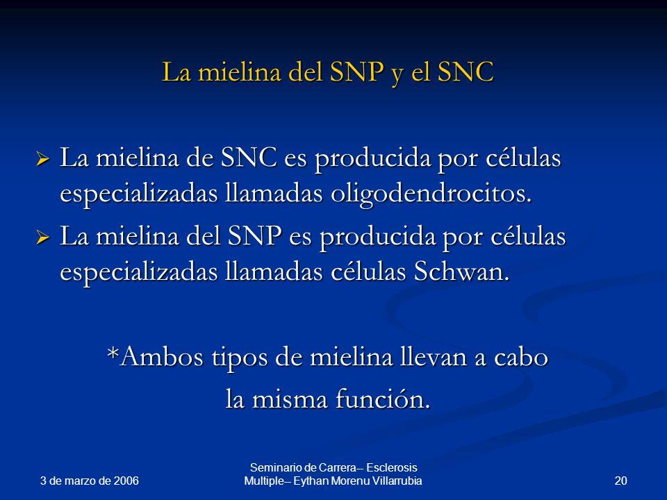 3 de marzo de 2006 20 Seminario de Carrera-- Esclerosis Multiple-- Eythan Morenu Villarrubia La mielina del SNP y el SNC La mielina de SNC es producid