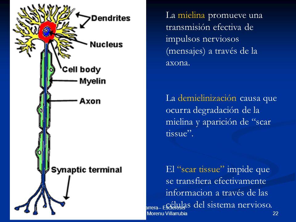 3 de marzo de 2006 22 Seminario de Carrera-- Esclerosis Multiple-- Eythan Morenu Villarrubia La mielina promueve una transmisión efectiva de impulsos