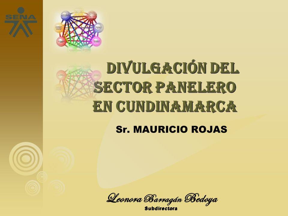 Leonora Barragán Bedoya Subdirectora DIVULGACIÓN DEL SECTOR PANELERO EN CUNDINAMARCA DIVULGACIÓN DEL SECTOR PANELERO EN CUNDINAMARCA Sr. MAURICIO ROJA