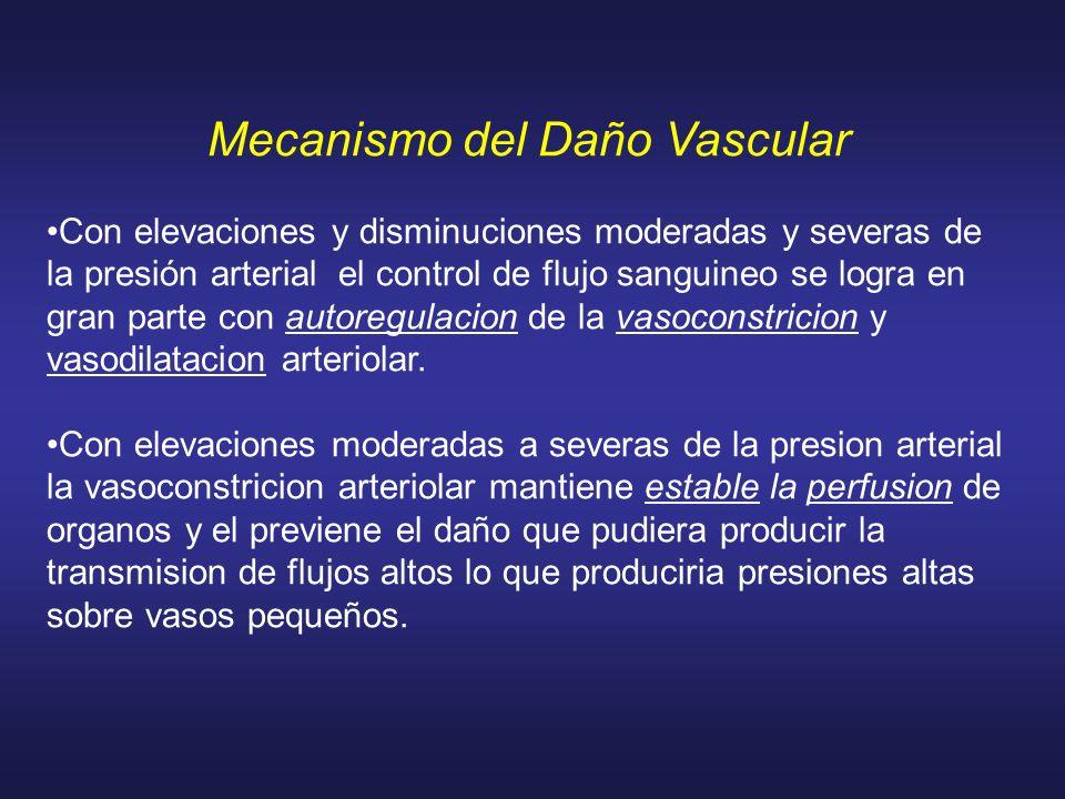 Mecanismo del Daño Vascular Con elevaciones y disminuciones moderadas y severas de la presión arterial el control de flujo sanguineo se logra en gran