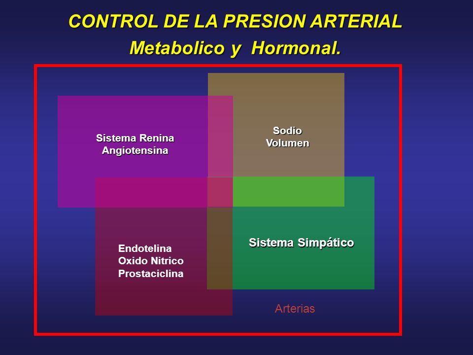 CONTROL DE LA PRESION ARTERIAL Metabolico y Hormonal. SodioVolumen Sistema Renina Angiotensina Sistema Simpático Endotelina Oxido Nitrico Prostaciclin