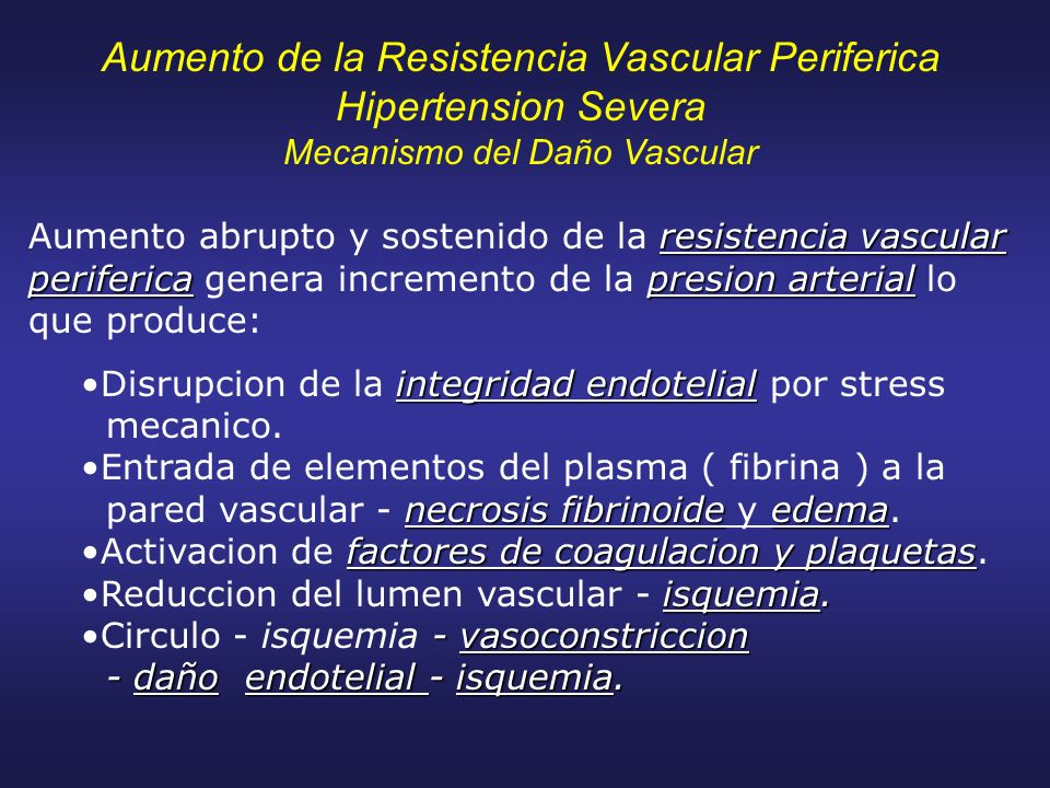 Aumento de la Resistencia Vascular Periferica Hipertension Severa Mecanismo del Daño Vascular resistencia vascular perifericapresion arterial Aumento