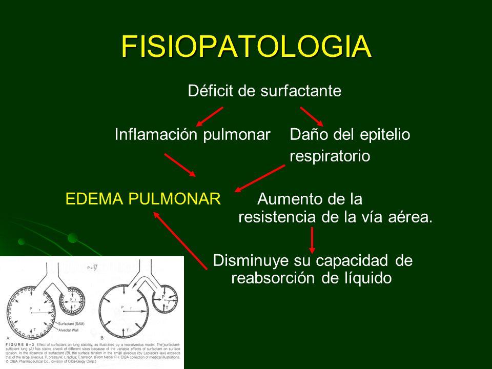 FISIOPATOLOGIA Déficit de surfactante Inflamación pulmonar Daño del epitelio respiratorio EDEMA PULMONAR Aumento de la resistencia de la vía aérea.