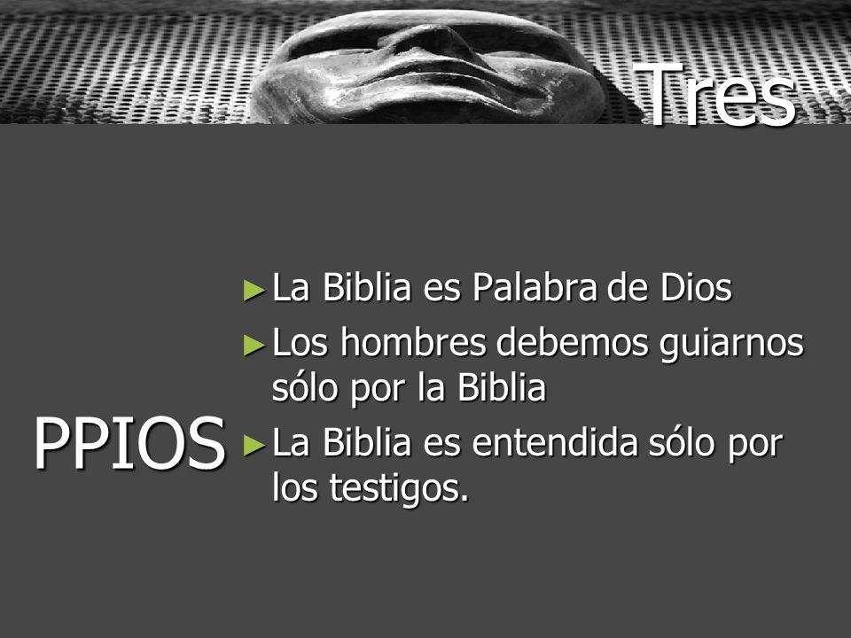 Tres La Biblia es Palabra de Dios La Biblia es Palabra de Dios Los hombres debemos guiarnos sólo por la Biblia Los hombres debemos guiarnos sólo por l