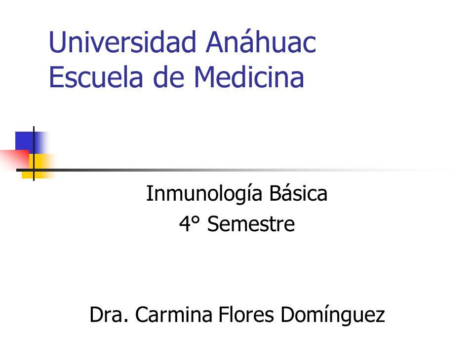 Universidad Anáhuac Escuela de Medicina Inmunología Básica 4° Semestre Dra. Carmina Flores Domínguez