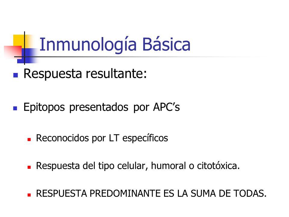 Inmunología Básica Respuesta resultante: Epitopos presentados por APCs Reconocidos por LT específicos Respuesta del tipo celular, humoral o citotóxica