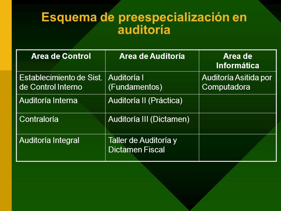 Esquema de preespecialización en auditoría Area de ControlArea de AuditoríaArea de Informática Establecimiento de Sist. de Control Interno Auditoría I