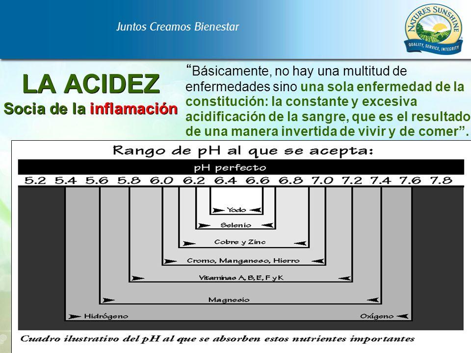 LA ACIDEZ Socia de la inflamación Básicamente, no hay una multitud de enfermedades sino una sola enfermedad de la constitución: la constante y excesiv
