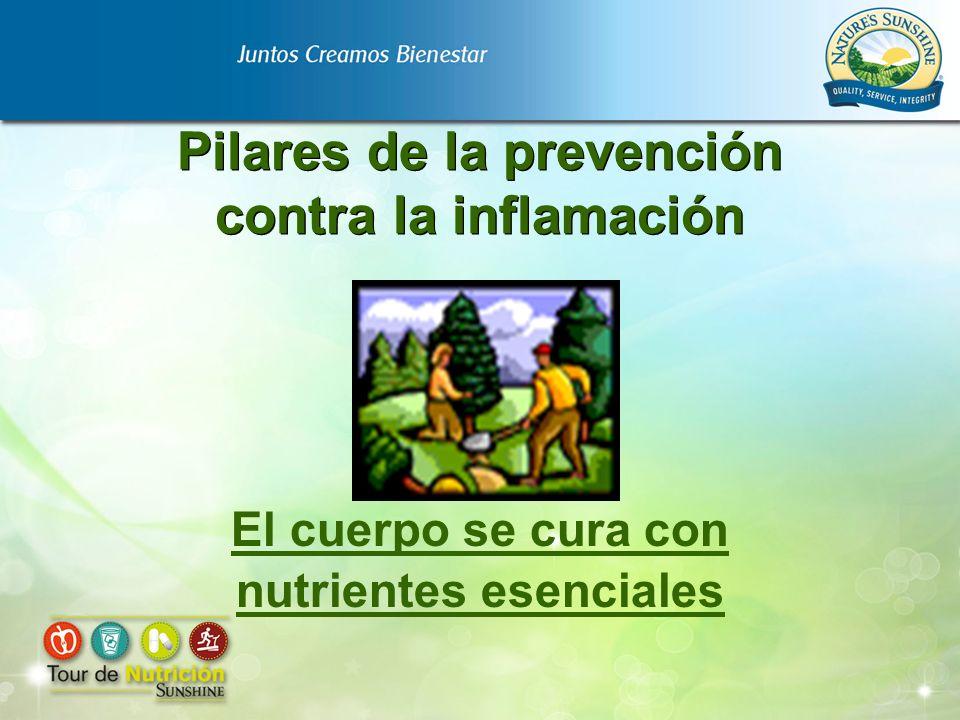 Pilares de la prevención contra la inflamación El cuerpo se cura con nutrientes esenciales