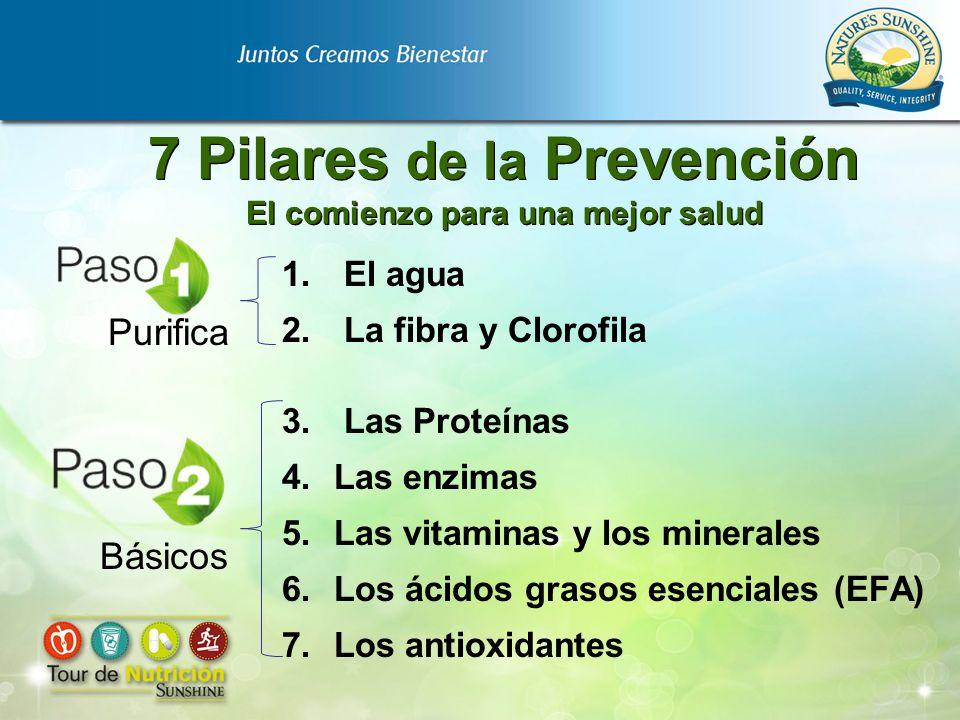 7 Pilares de la Prevención El comienzo para una mejor salud 1. El agua 2. La fibra y Clorofila 3. Las Proteínas 4.Las enzimas 5.Las vitaminas y los mi