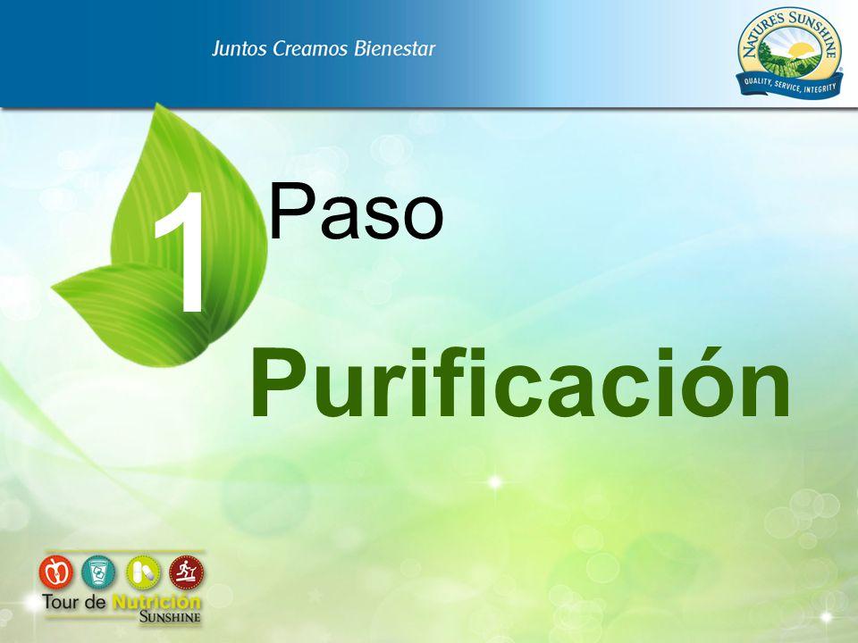 Purificación Paso 1
