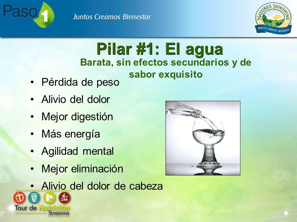 Pilar #1: El agua Pérdida de peso Alivio del dolor Mejor digestión Más energía Agilidad mental Mejor eliminación Alivio del dolor de cabeza Barata, si