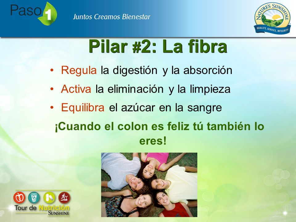 Pilar # 2: La fibra Regula la digestión y la absorción Activa la eliminación y la limpieza Equilibra el azúcar en la sangre ¡Cuando el colon es feliz
