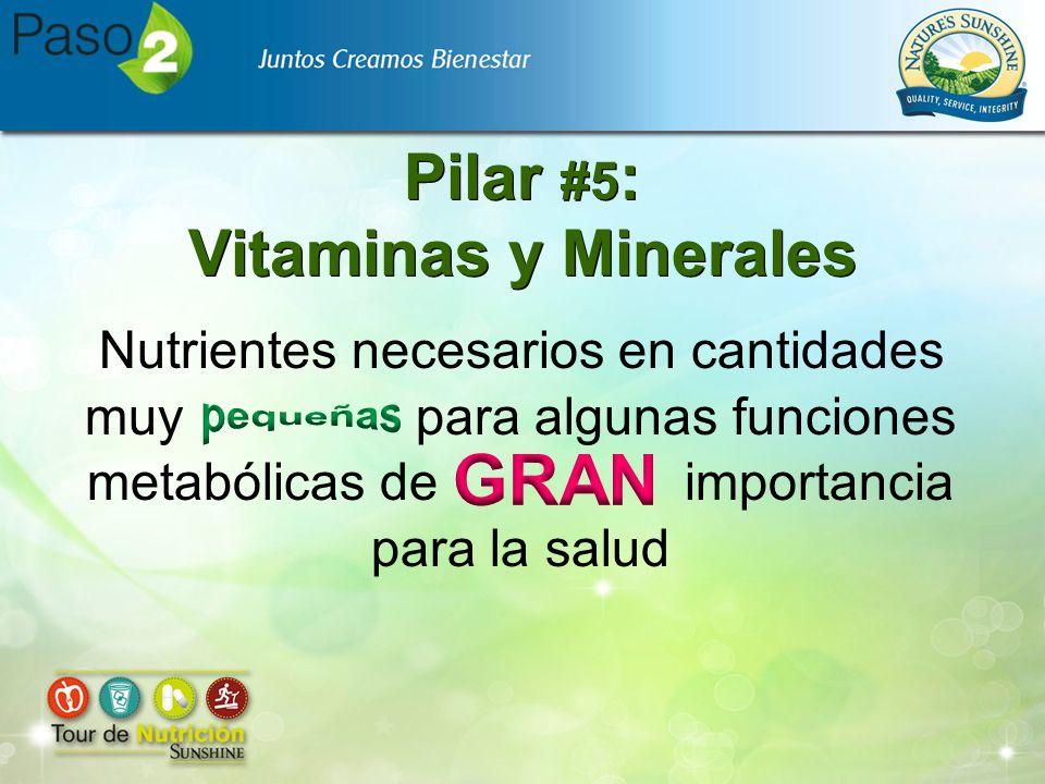 Nutrientes necesarios en cantidades muy para algunas funciones metabólicas de importancia para la salud Pilar #5 : Vitaminas y Minerales