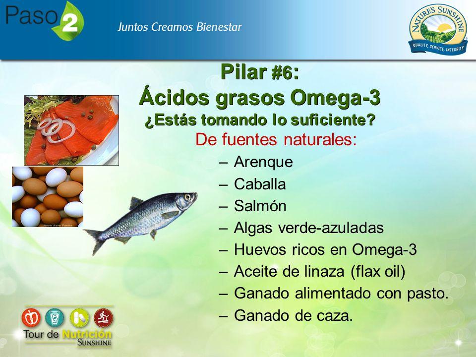 Pilar #6 : Ácidos grasos Omega-3 ¿Estás tomando lo suficiente? De fuentes naturales: –Arenque –Caballa –Salmón –Algas verde-azuladas –Huevos ricos en