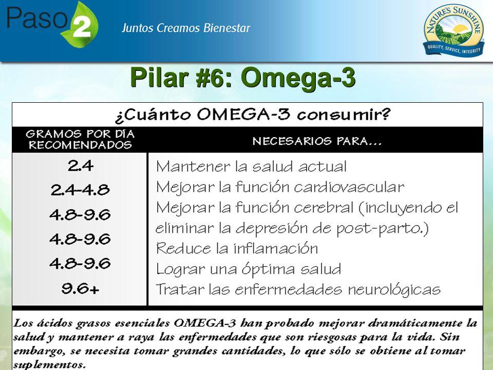 Pilar #6 : Omega-3