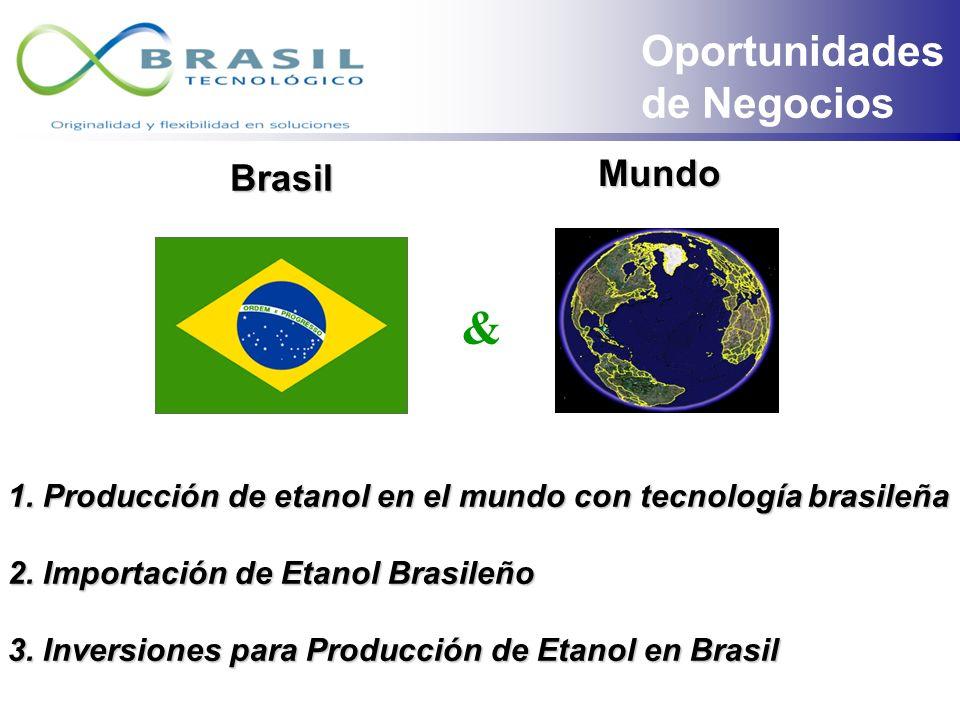 TECNOLOGIAS Fonte: UNICA e F.O. Licht Comparativo de Costos Médios de Producción de BioEtanol CAÑA MAÍZ BETABEL Comparativo de Productividad de Produc
