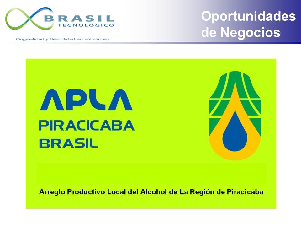 Región Económica de Piracicaba Oportunidades de Negocios