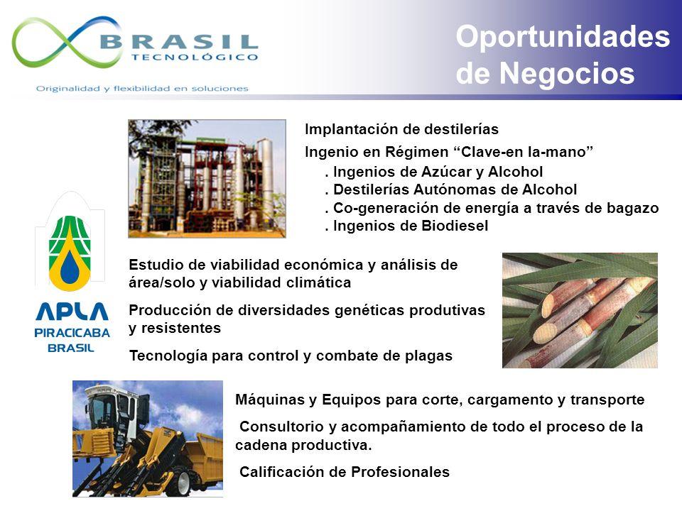 El APLA es una entidad que agrega toda la cadena productiva del alcohol formada por industrias productoras de equipos, centros de búsquedas y desarrol