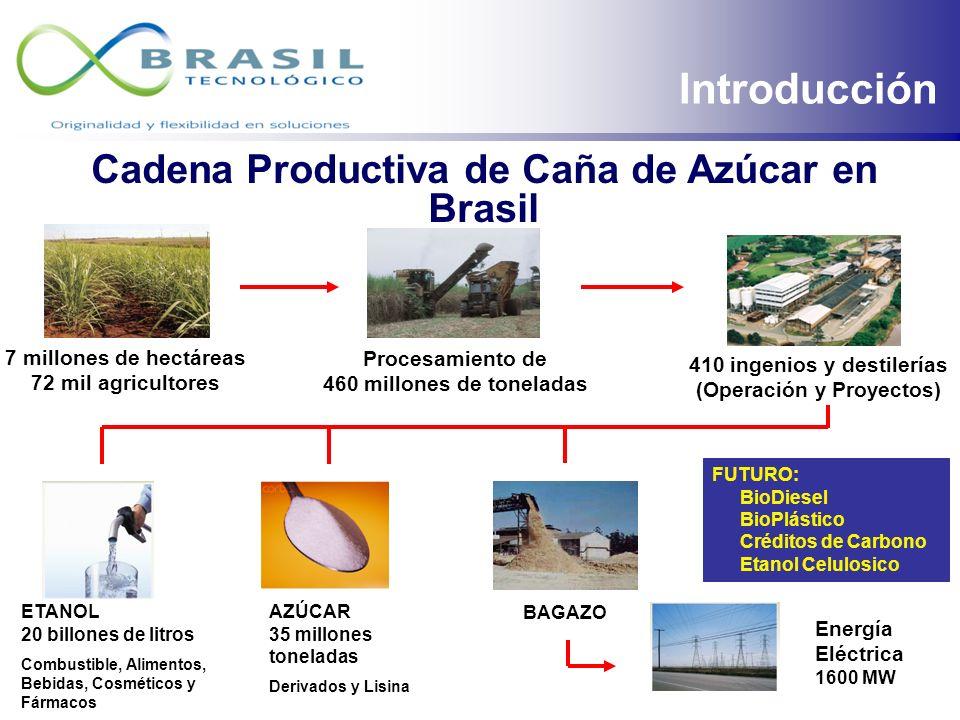 ROTEIRO Perspectivas de la demanda y de la oferta del etanol: en Brasil y en el Mundo; Nuevas tecnologías: lo que es una planta moderna en Brasil; Opo