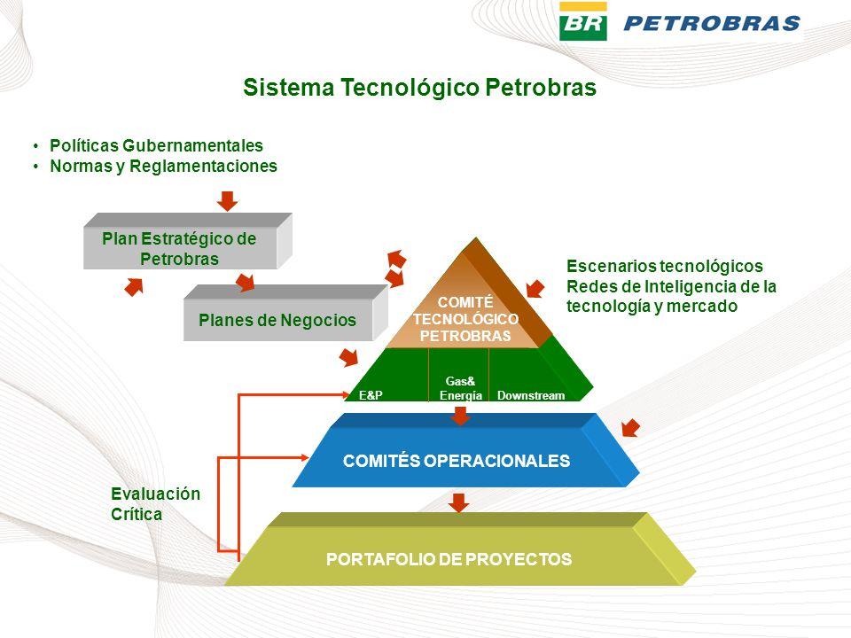 COMITÉS OPERACIONALES Plan Estratégico de Petrobras Políticas Gubernamentales Normas y Reglamentaciones E&PDownstream COMITÉ TECNOLÓGICO PETROBRAS Gas