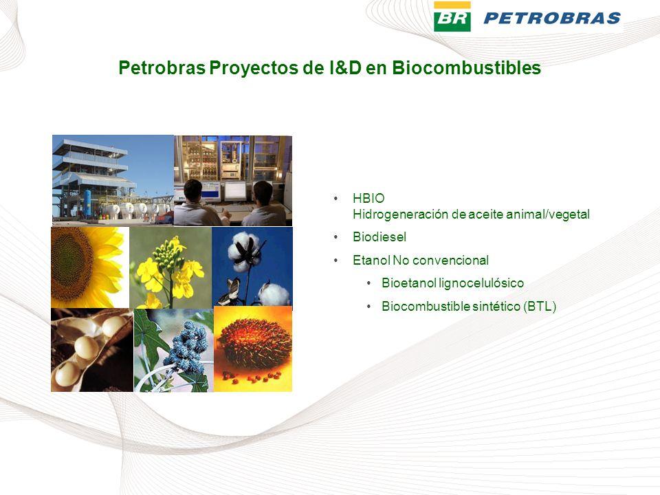 HBIO Hidrogeneración de aceite animal/vegetal Biodiesel Etanol No convencional Bioetanol lignocelulósico Biocombustible sintético (BTL) Petrobras Proy