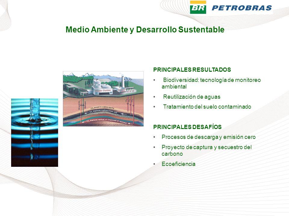 PRINCIPALES RESULTADOS Biodiversidad: tecnología de monitoreo ambiental Reutilización de aguas Tratamiento del suelo contaminado PRINCIPALES DESAFÍOS
