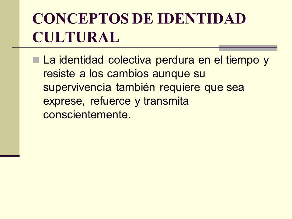 CONCEPTOS DE IDENTIDAD CULTURAL La identidad colectiva perdura en el tiempo y resiste a los cambios aunque su supervivencia también requiere que sea e