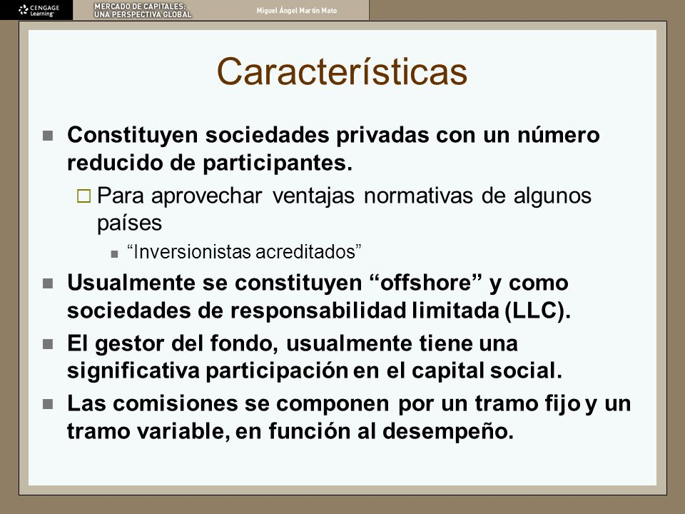 Características Constituyen sociedades privadas con un número reducido de participantes. Para aprovechar ventajas normativas de algunos países Inversi