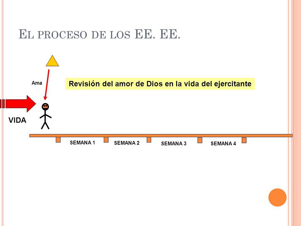 E L PROCESO DE LOS EE. EE. SEMANA 1 SEMANA 2 SEMANA 3SEMANA 4 Ama Revisión del amor de Dios en la vida del ejercitante VIDA