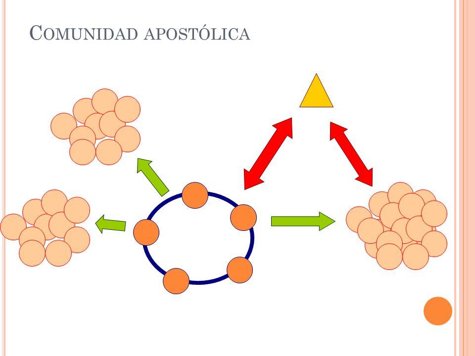 C OMUNIDAD APOSTÓLICA