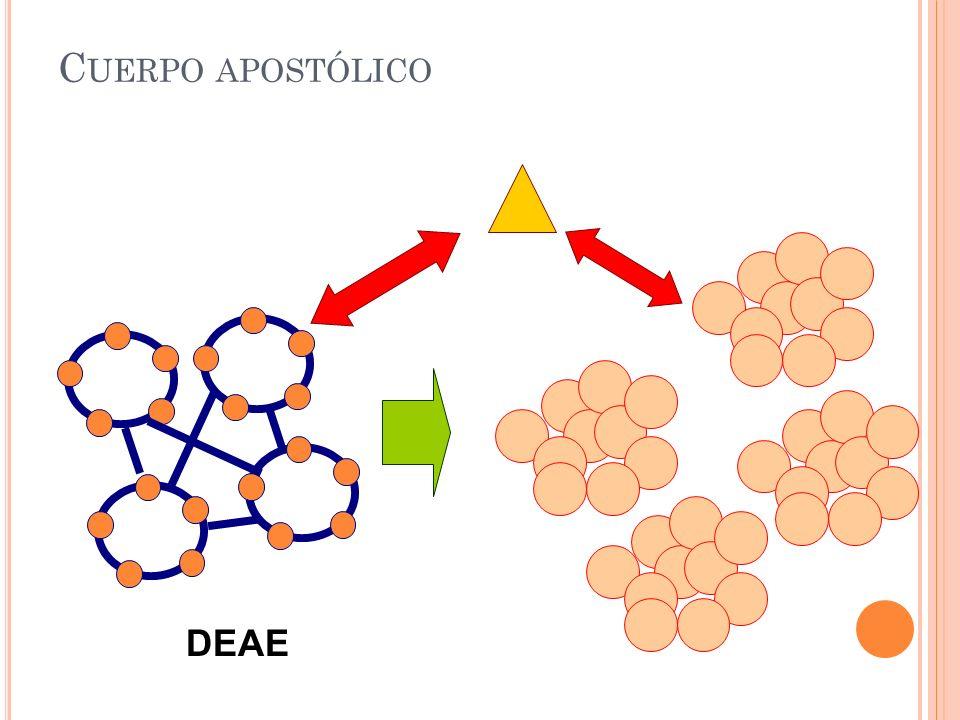 C UERPO APOSTÓLICO DEAE