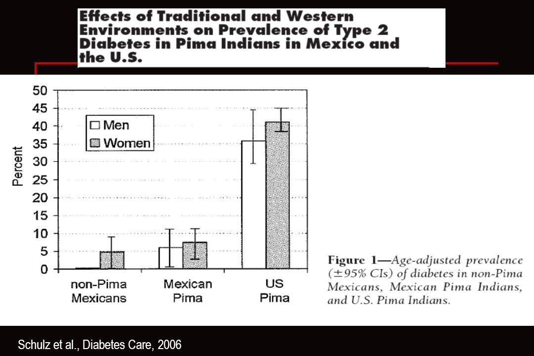 Schulz et al., Diabetes Care, 2006