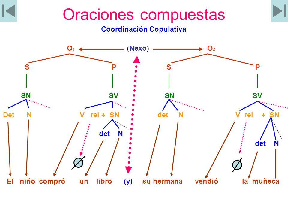 Oraciones compuestas Coordinación Copulativa O 1 (Nexo) O 2 S P S P SN SV SN SV Det N V rel + SN det N V rel + SN det N El niño compró un libro (y) su