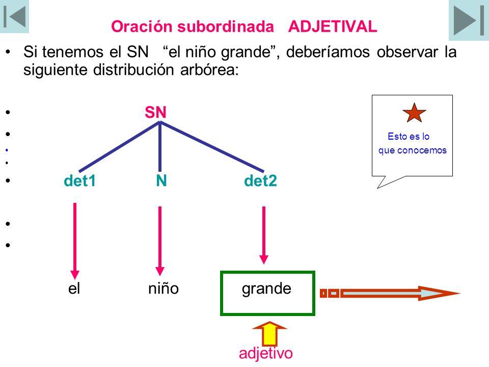 Adjetivo = oración subordinada adjetival El adjetivo grande se puede cambiar por que es grande, lo cual se puede registrar en el siguiente esquema arbóreo: SN det1 N det2= Oración subordinada adj O S PN NEXO el niño que es grande G R A N D E