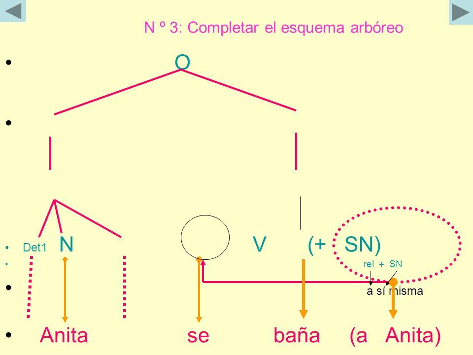 N º 3: Completar el esquema arbóreo O Det1 N V (+ SN) rel + SN a sí misma Anita se baña (a Anita)